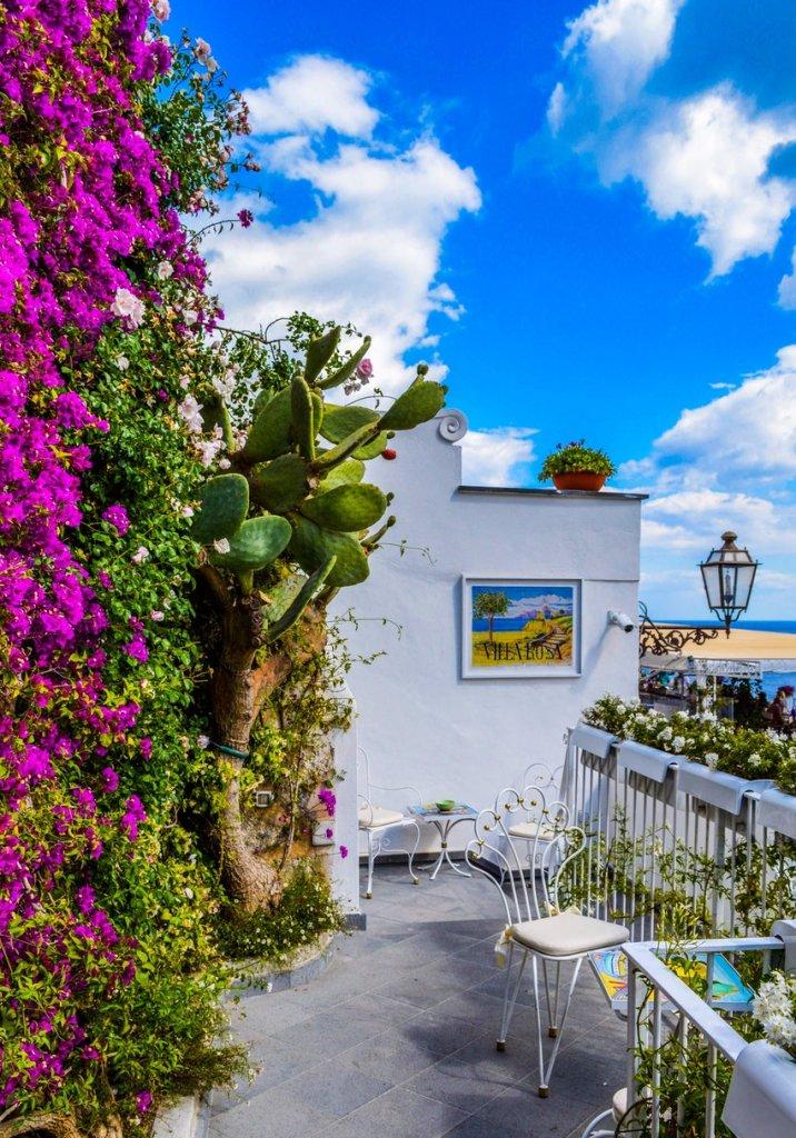 colorful balcony garden